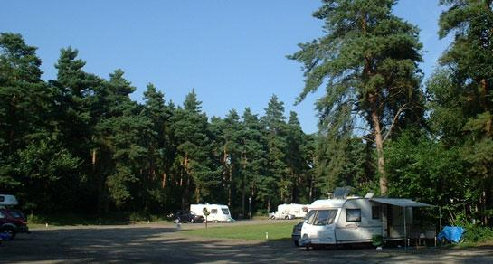 thetford_forest_campsite