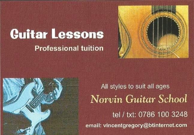 norvin_guitar