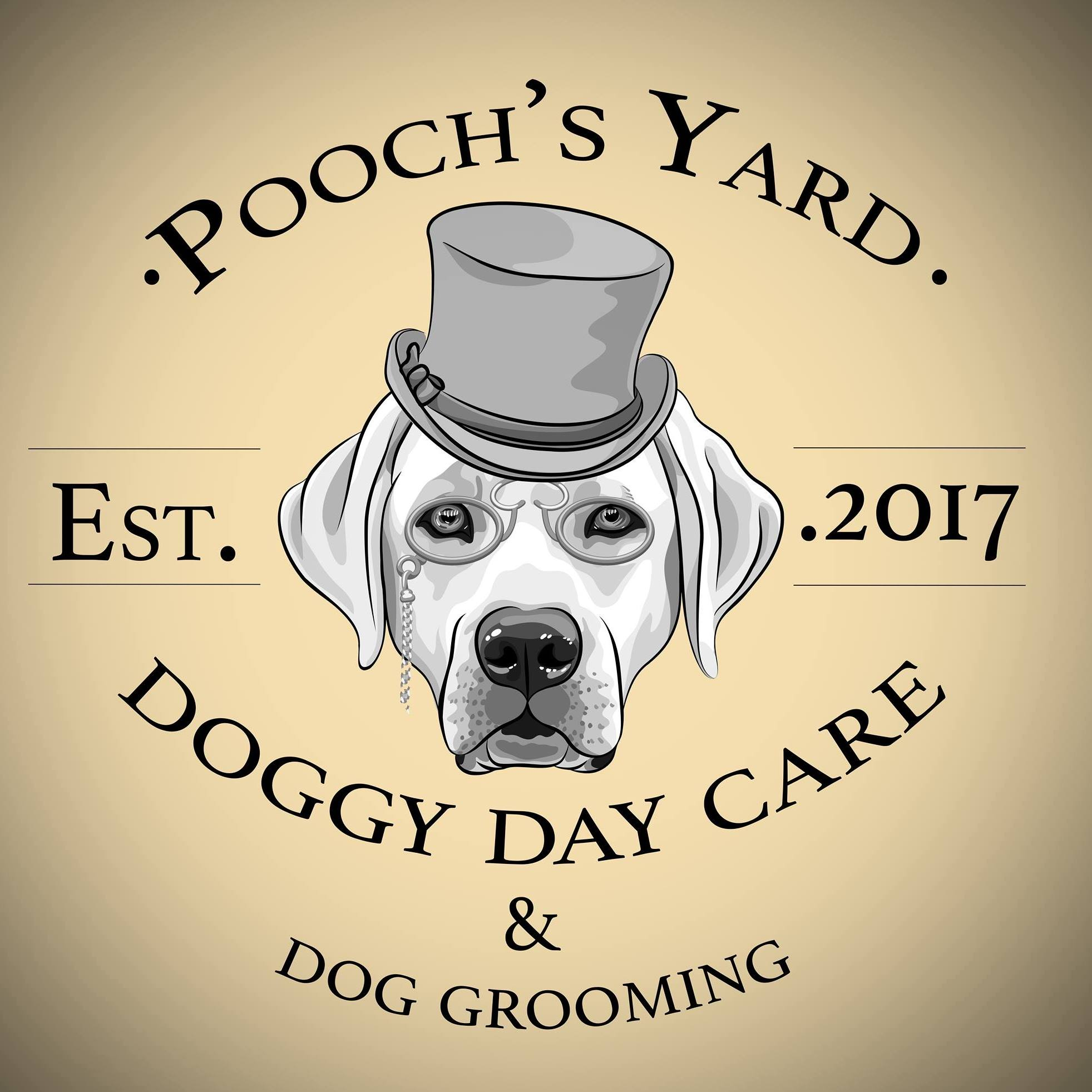 Pooch's Yard - Doggy Day Care